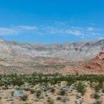 Littlefield  -  Arizona