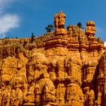 Red Canyon  Utah