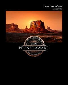Bronze Award 2020